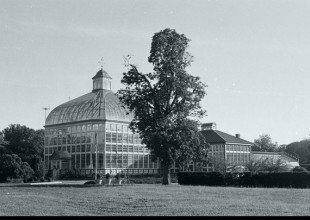 Photo: The Conservatory (now known as the Howard Peter Rawlings Conservatory and Botanic Gardens of Baltimore) is home to horticultural events throughout the year.