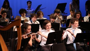 Event: LS & MS Instrumental Concert