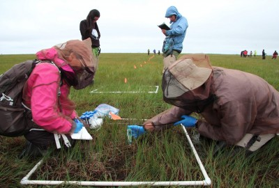 Featured News: Park's ISAMR Program Travels to Northern Canada for Annual Climate Change Research