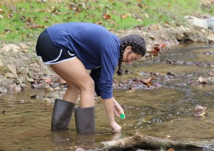 Photo: From Kindergarteners observing stream life to Middle and Upper Schoolers conducting in-depth studies of water quality, students have been able to explore, observe, and study the stream in a variety of ways.