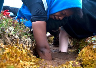 Photo: Students feeling in the mud for permafrost. Photo by K. Whitney.