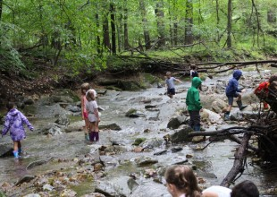 Photo: For over 50 years, Park School has incorporated explorations of Moores Branch, the stream that runs through Park's campus, into the hands-on learning curriculum, serving students from all three divisions.
