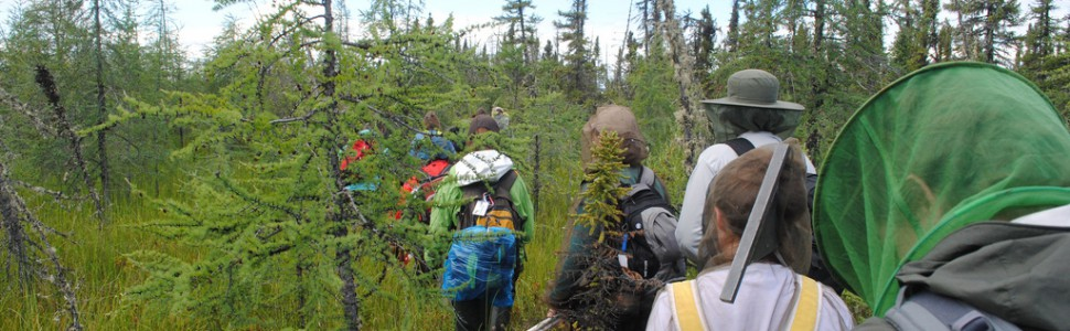 International Student-led Arctic Monitoring & Research (ISAMR)